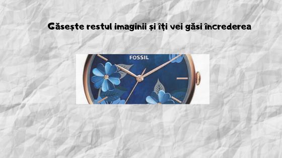 flori de nu ma uita fossil